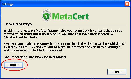 Blokir Situs Porno